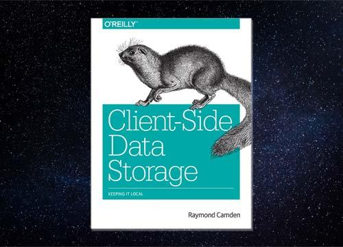 Client-Side Data Storage