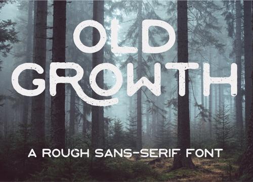 Грубоватый шрифт OLD GROWTH