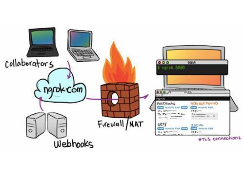 Ngrok — транслируем сайт из локальной сети