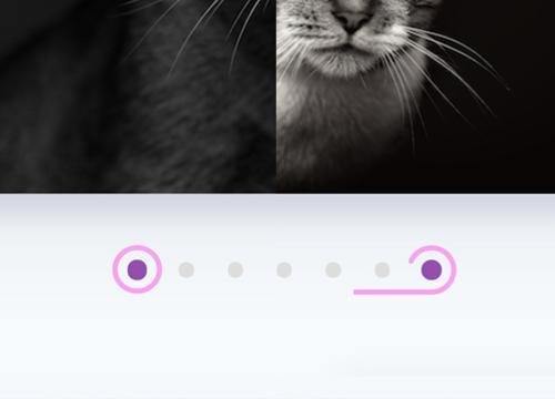 Анимации линий в SVG с JavaScript
