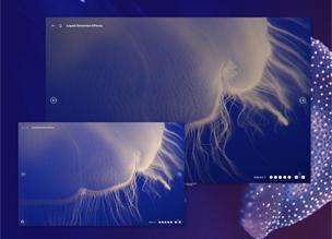 Эффект искажения от жидкости на WebGL
